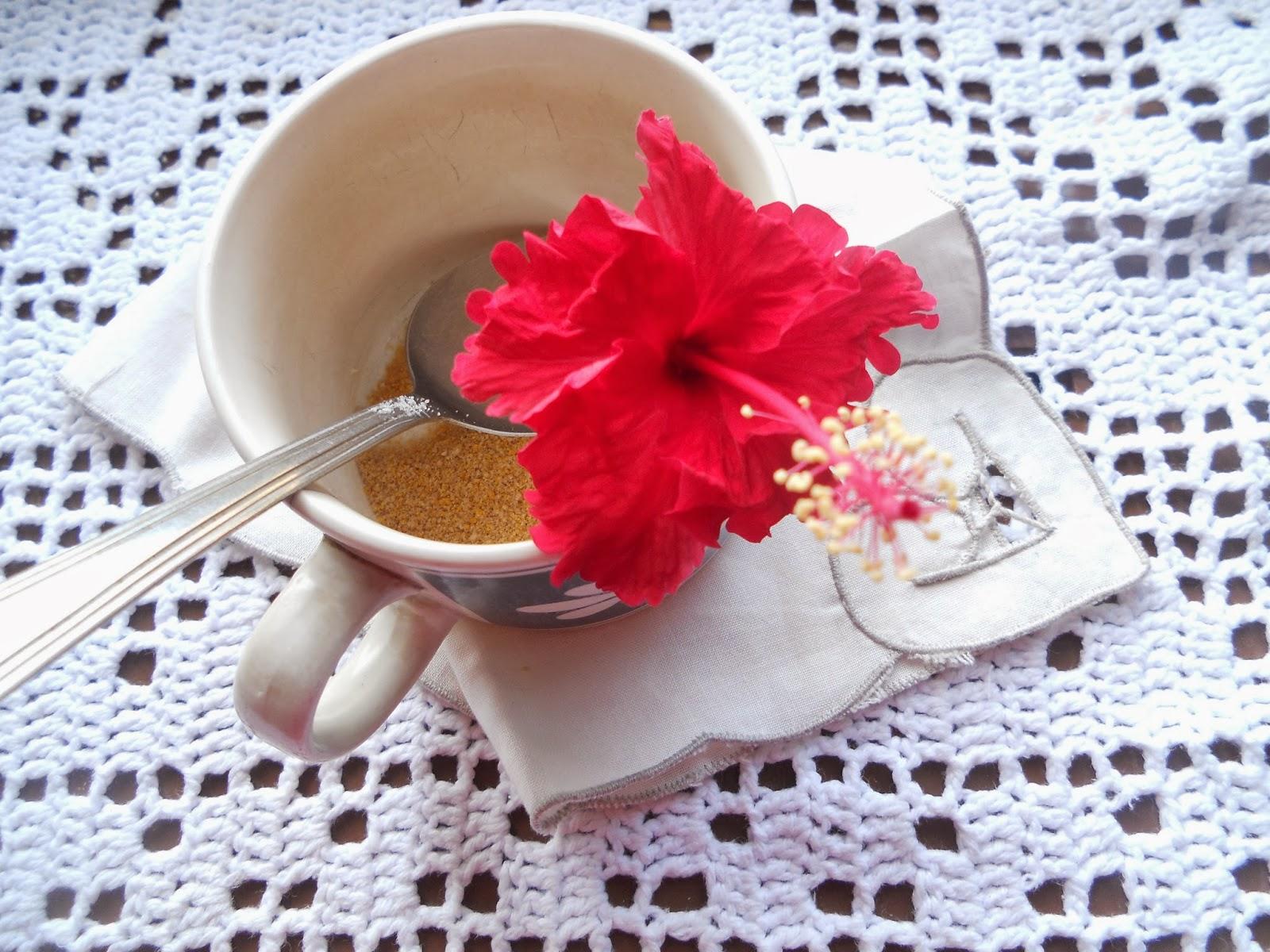 Health benefits of hibiscus gumamela be healthy and well hibiscus flower in my tea izmirmasajfo